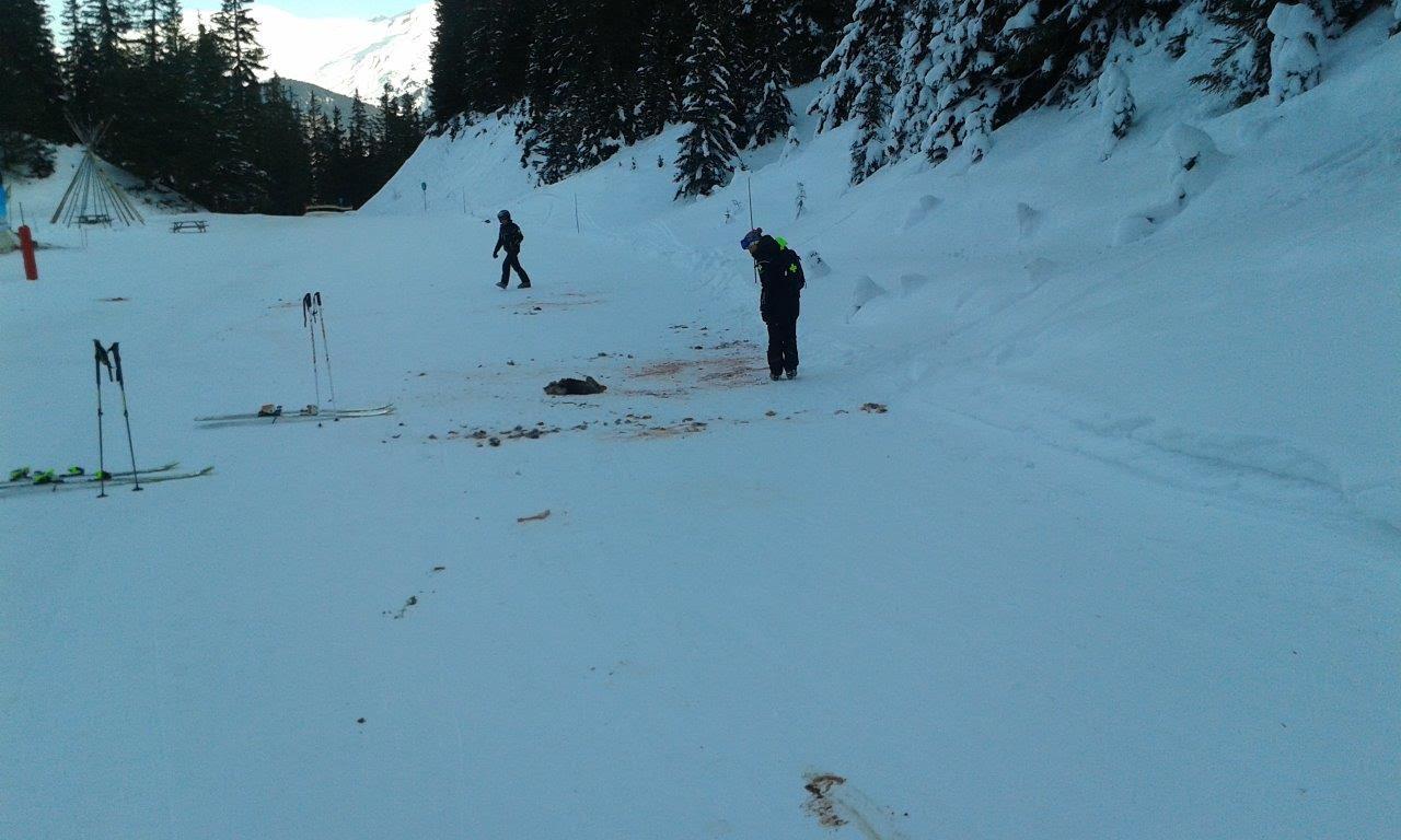 Loups sur le domaine skiable de courchevel for Piste de ski interieur