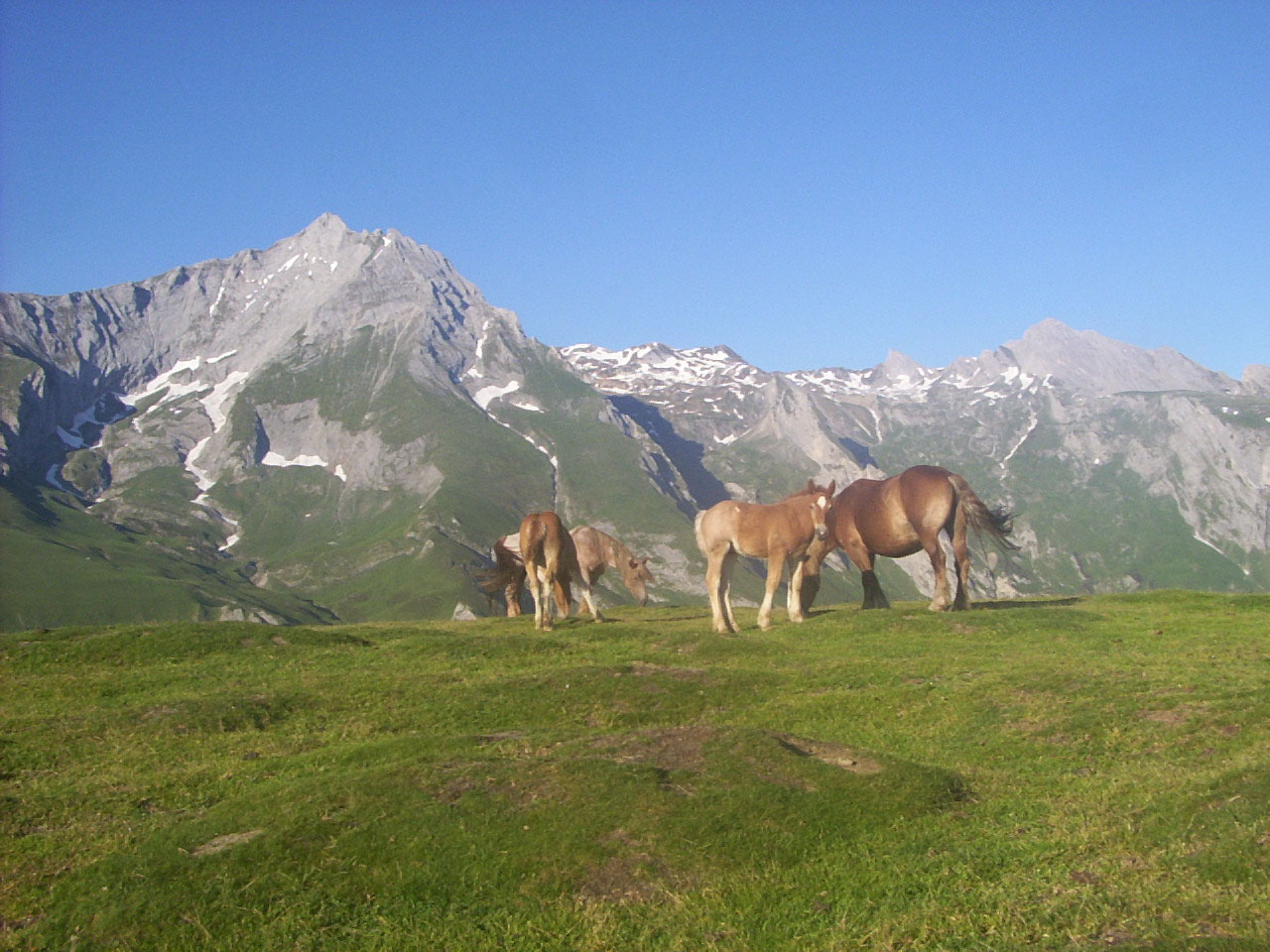 A visiter dans les hautes pyr n es - Office tourisme hautes pyrenees ...